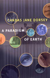 Book cover of Paradigm of Earth